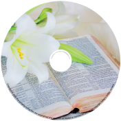 BMP-053 - Orchid on Bible